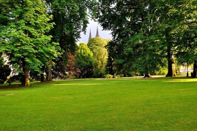 Espace vert jardin for Entrepreneur paysagiste