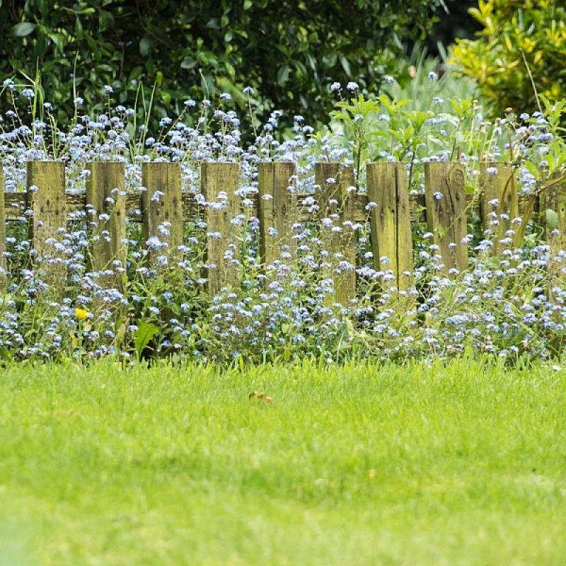 une barrière de jardin en bois