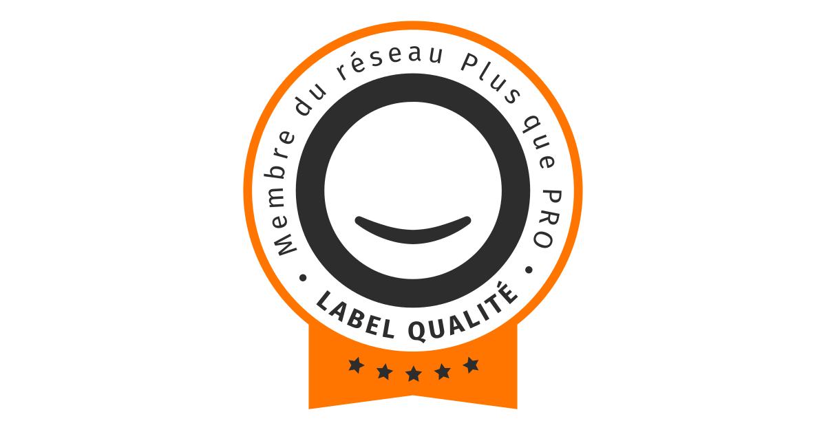 (c) Plus-que-pro.fr